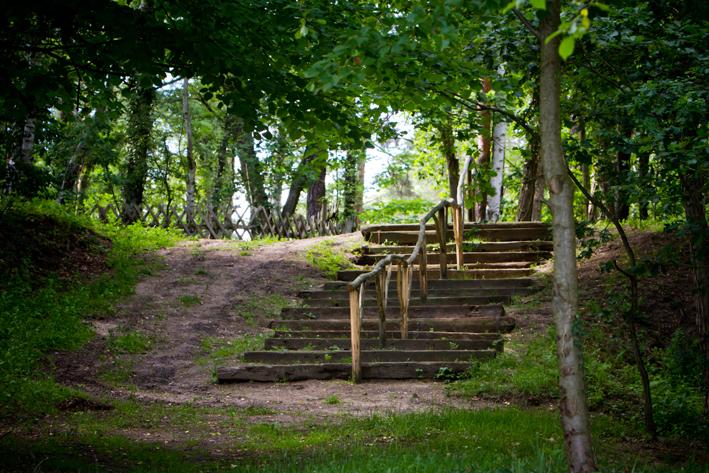 Treppe_zum_See_Natur_Campingplatz