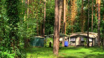 Permalink auf:Campinglatz