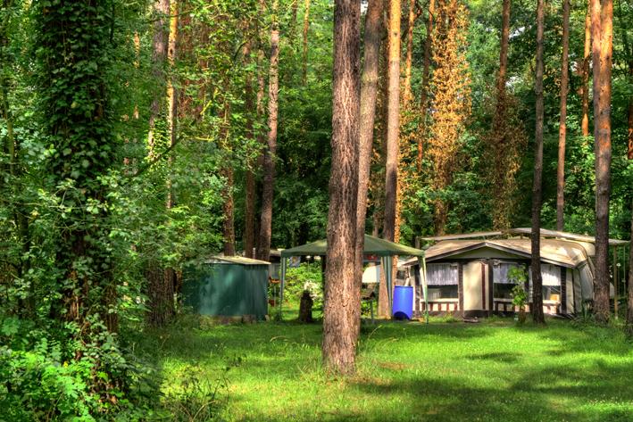 Dauercamping_5_Natur_Campingplatz