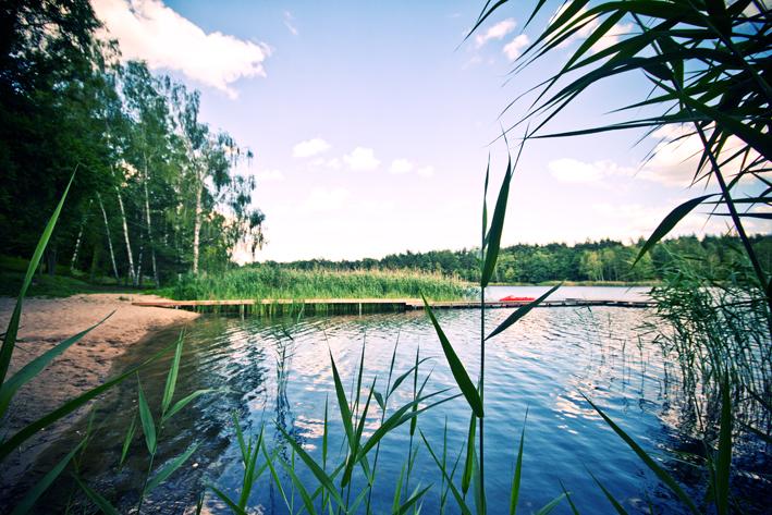 Strand_Steg_2_Natur_Campingplatz